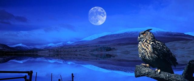 Волшебный лунный календарь с 26