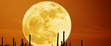 Волшебный лунный календарь с 14 по 20 ноября 2011 года