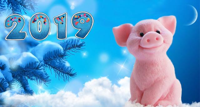 как встретить новый 2019 год свиньи
